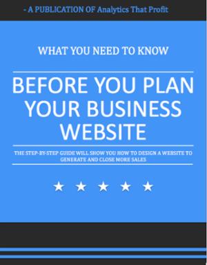 business website_analytics that profit
