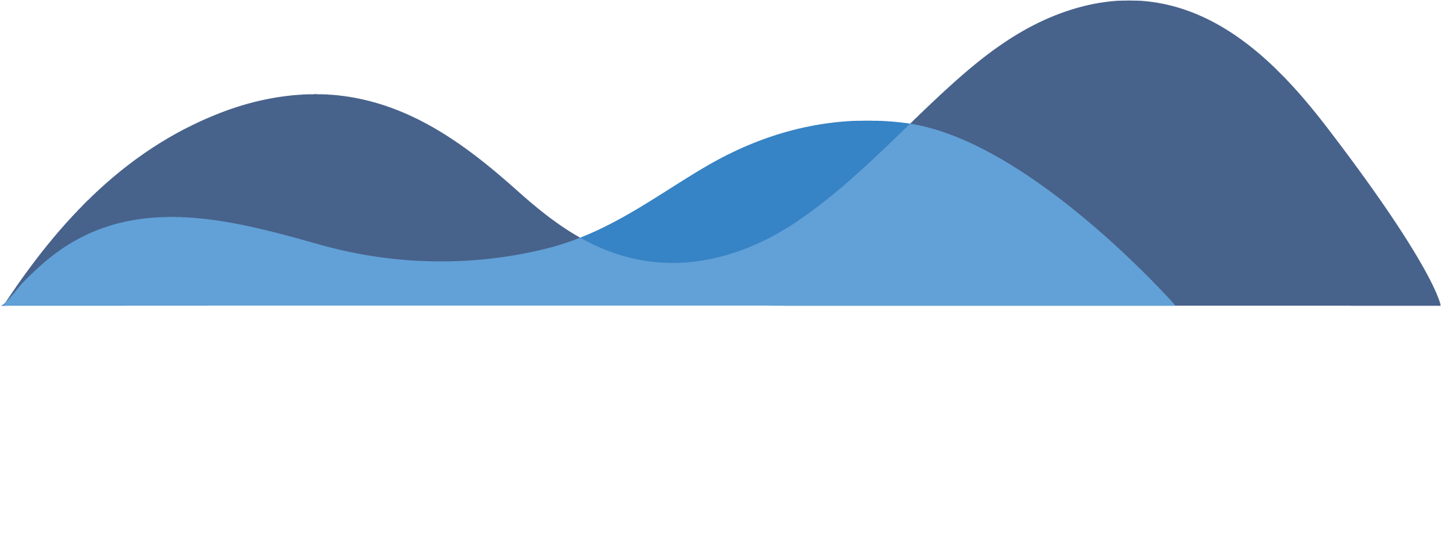 Analytics_That_Profit_Logo_Reverse-1