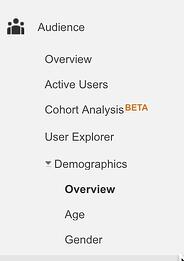 Demographics+in+Google+Analytics.jpg