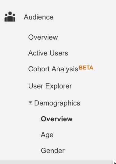 Demographics+in+Google+Analytics.jpg