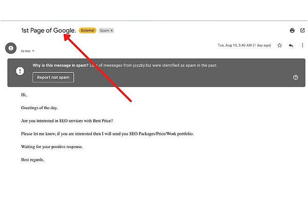 how to know if your seo is a scam _1st page on google_ analytics that profit