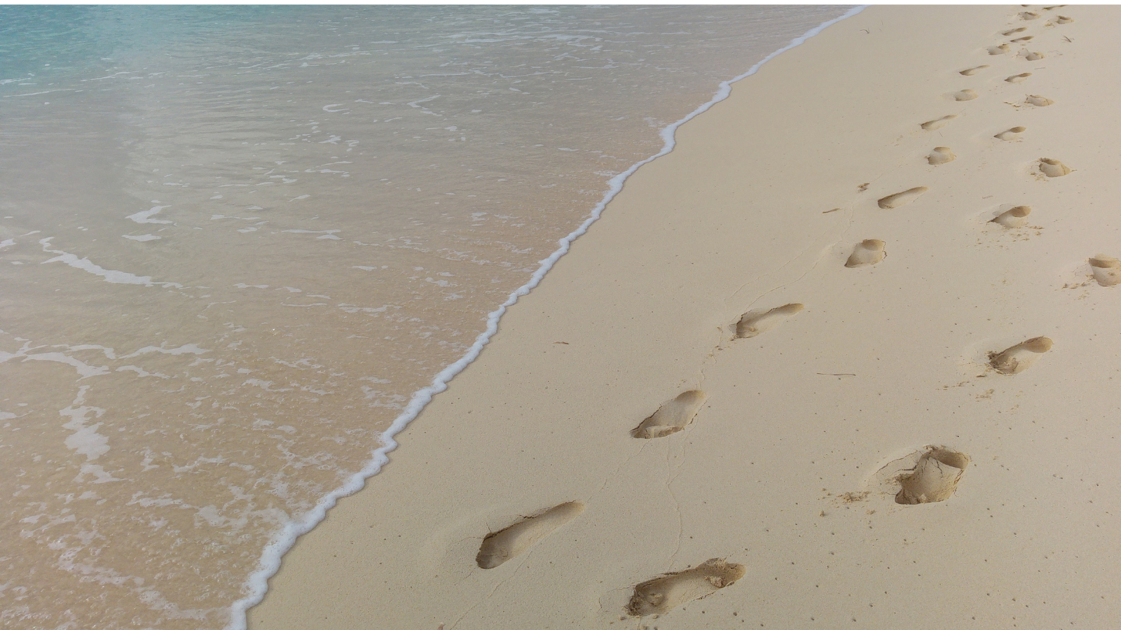 Managing your digital footprint to improve SEO_analytics that profit